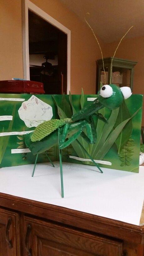 Brodies 3d Praying Mantis Model Babysitting Crafts Junk