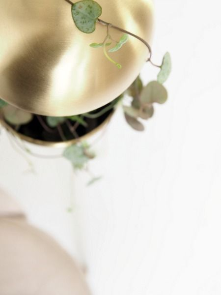 Trendy-Hanging-Planter-Pendant