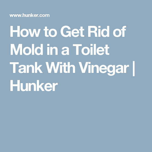 How to Get Rid of Mold in a Toilet Tank With Vinegar | Vinegar ...
