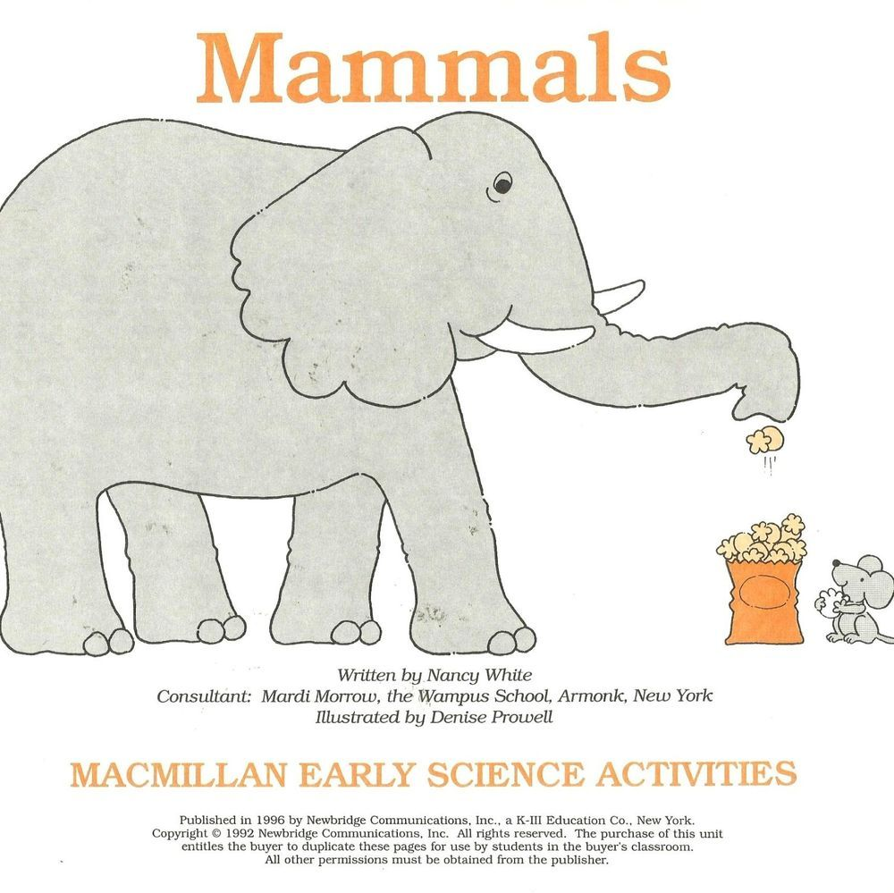 worksheet Mammal Worksheets mamals macmillan early science activities work sheet habitat identify observe worksheets