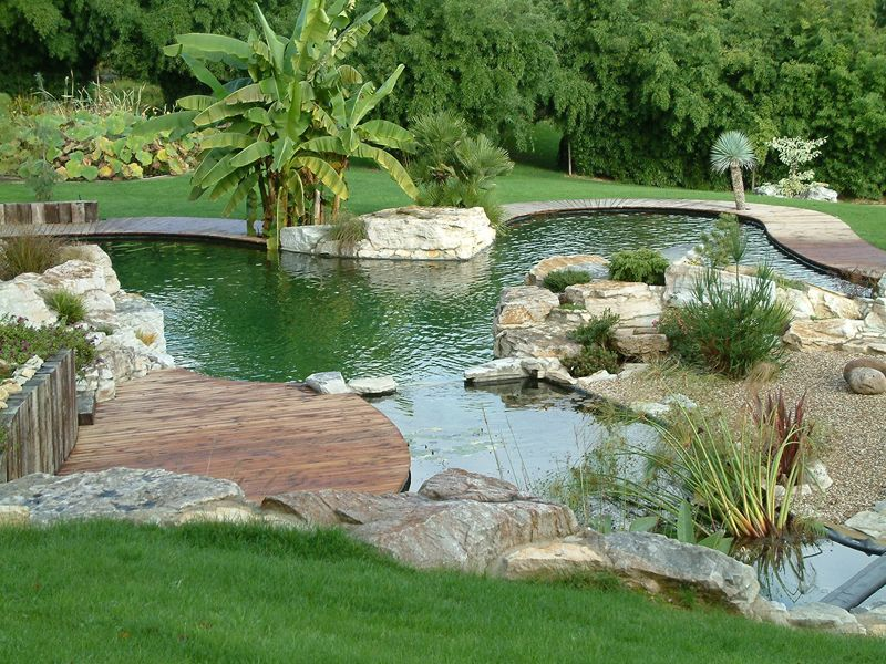 Exemples de bassins naturels pour la baignade ou pour paysager