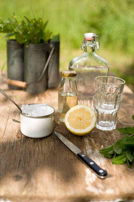 2 parts elderflower syrup  2 parts club soda  1 lemon  1 bunch of mint  1 to 2 parts gin to taste