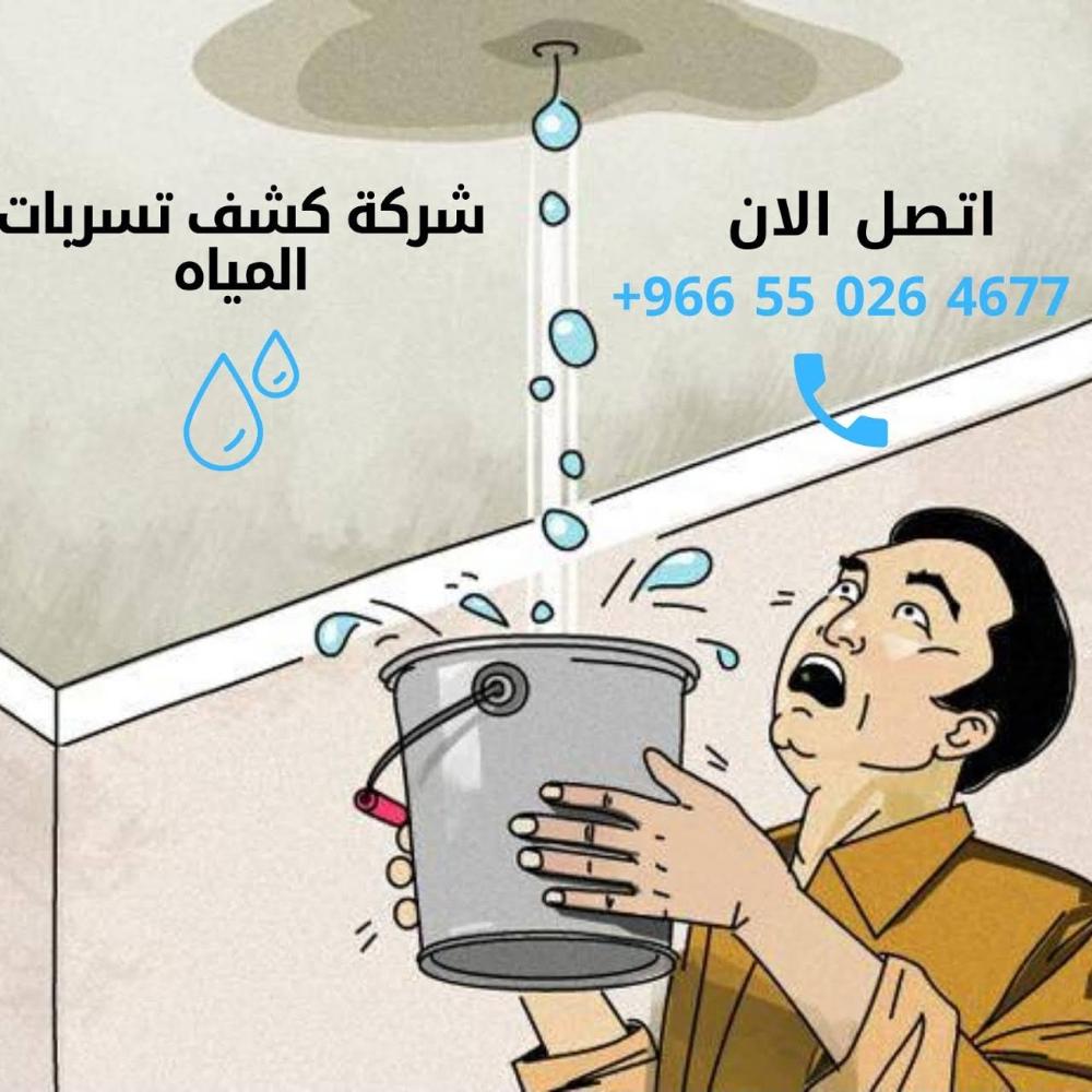 شركة كشف تسربات المياه خدمة إصلاح الأضرار الناتجة عن المياه في الرياض Family Guy Fictional Characters Water
