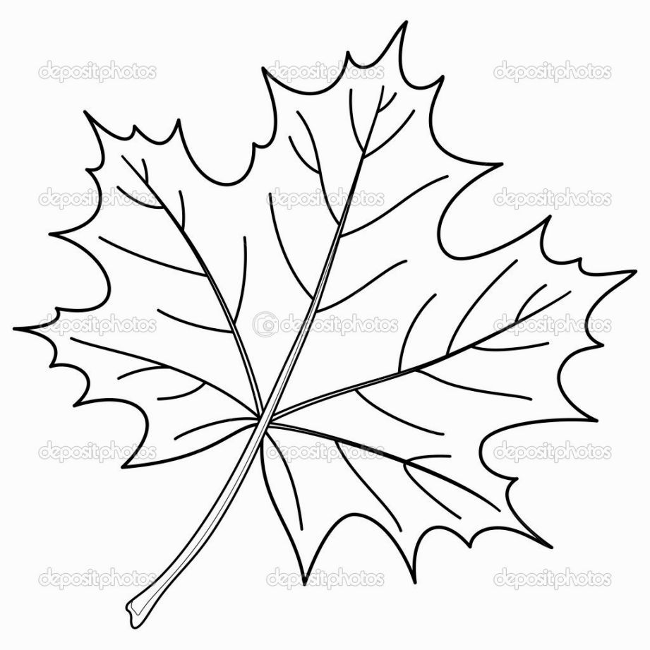 Maple Leaf Coloring Page Fall Leaves Coloring Pages Leaf