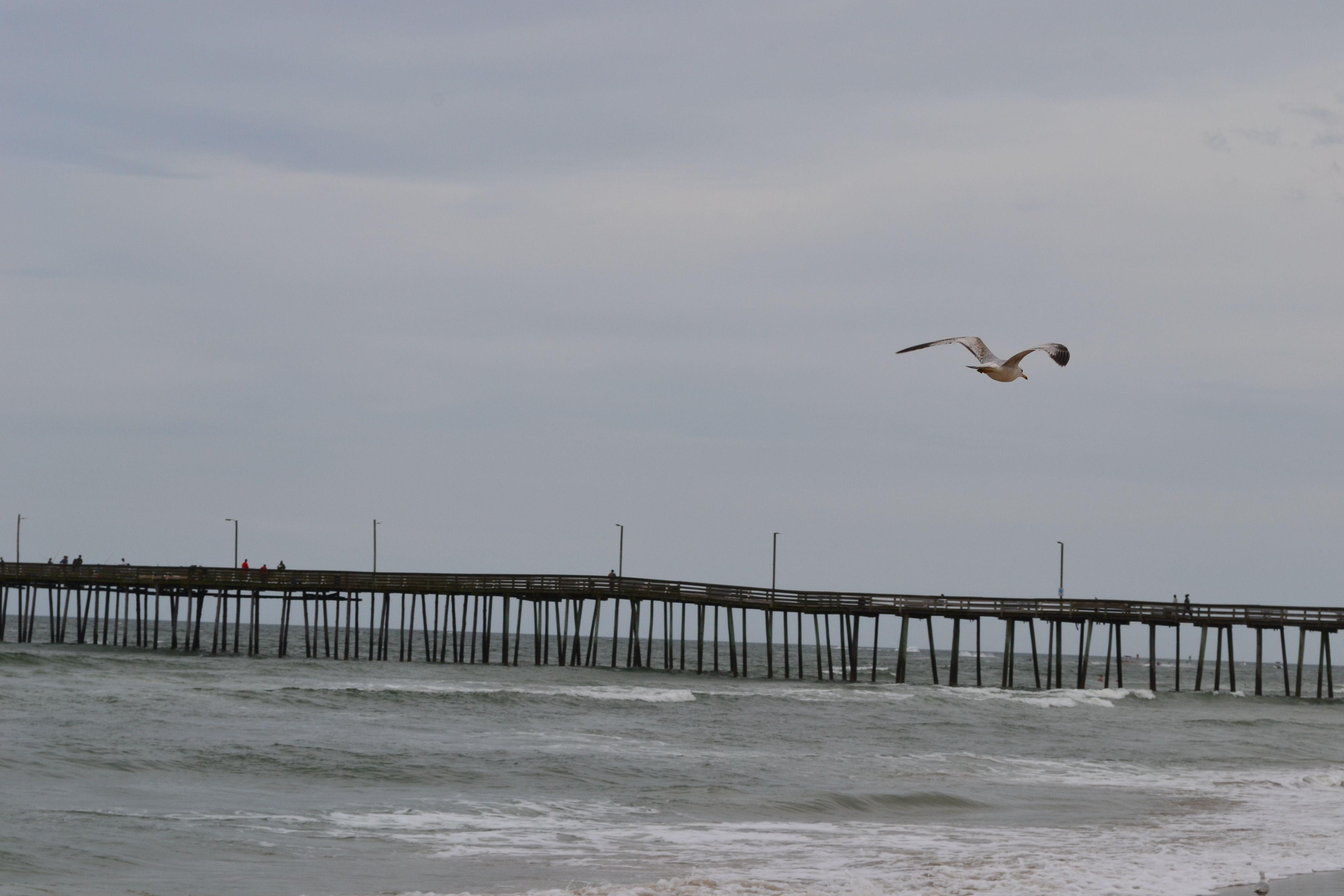 Fishing Pier At Virginia Beach Taken During A Trip A Few Years
