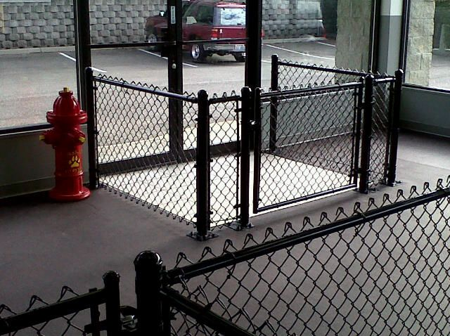 Scampers Daycamp For Dogs Interior Fencing Done Dog Daycare Dog Boarding Facility Dog Boarding