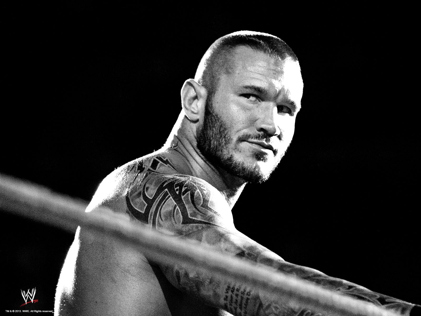 Randy Orton Wallpaper WWE Superstars Wallpapers PPVs