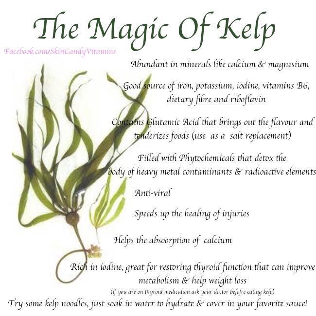 I eat at least 1 tsp Kelp powder everyday and I'm working ...
