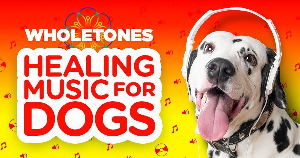Announcing Wholetones For Pets Calming Music Medication For