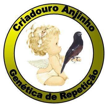 Criadouro Anjinho - São José/SC - criadourodecurioanjinho.weebly.com