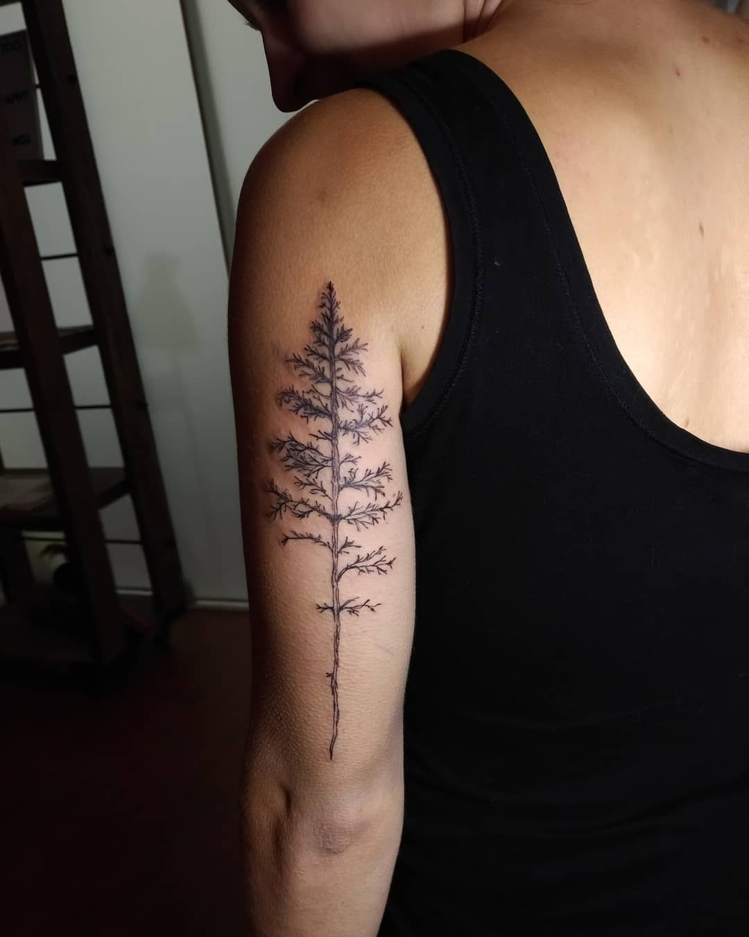 e8986864dcfdc Simple and Easy Pine Tree Tattoo – Designs & Meanings (2019) tattoos,tattoos  for women,tattoos for guys,tattoos for women small,tattoos for women half  ...