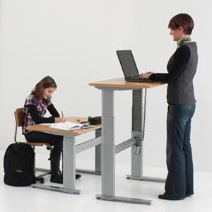 Stand Sit Desks Bunk Beds With Storage And Desk
