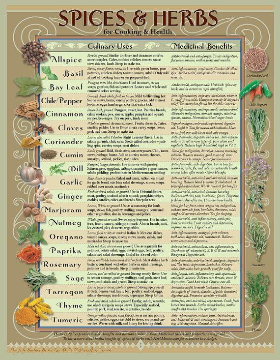 Healing Herbs Spices Kitchen Chart Healing Herbs Herbs Herbalism