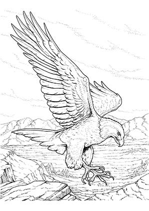 malvorlage vogel auf ast - tiffanylovesbooks