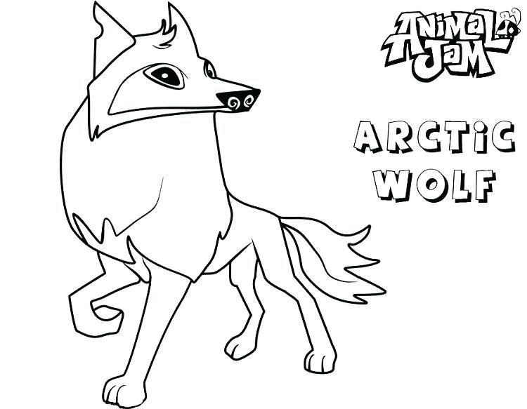 Coloring Rocks Fox Coloring Page Animal Jam Arctic Wolf