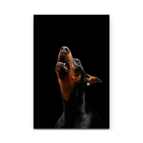 East Urban Home Portrait Of A Doberman Pinscher Print On Canvas
