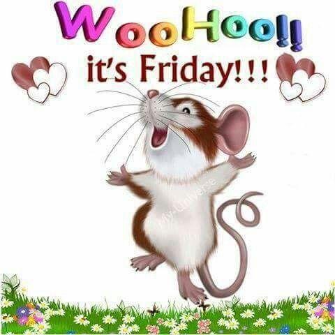 Woo Hoo It S Friday Good Morning Friday Its Friday Quotes Friday Humor