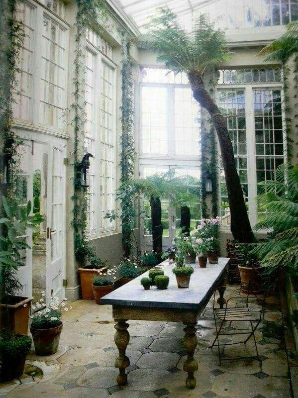 Pin de Kim Kolthoff en Gardening | Pinterest