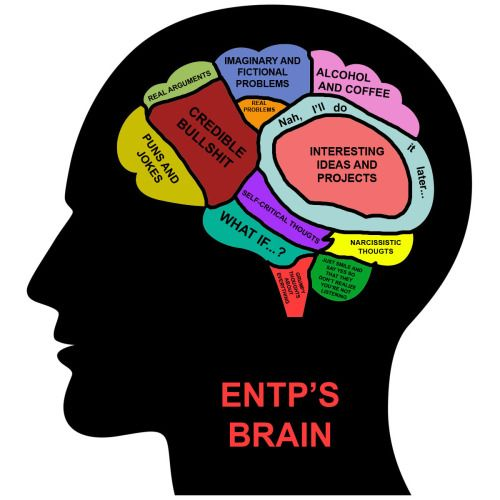brain posts - Screaming MBTI