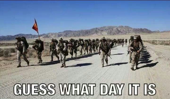 Hump Day Marine Corps Memes Usmc Humor Marine Corps Humor