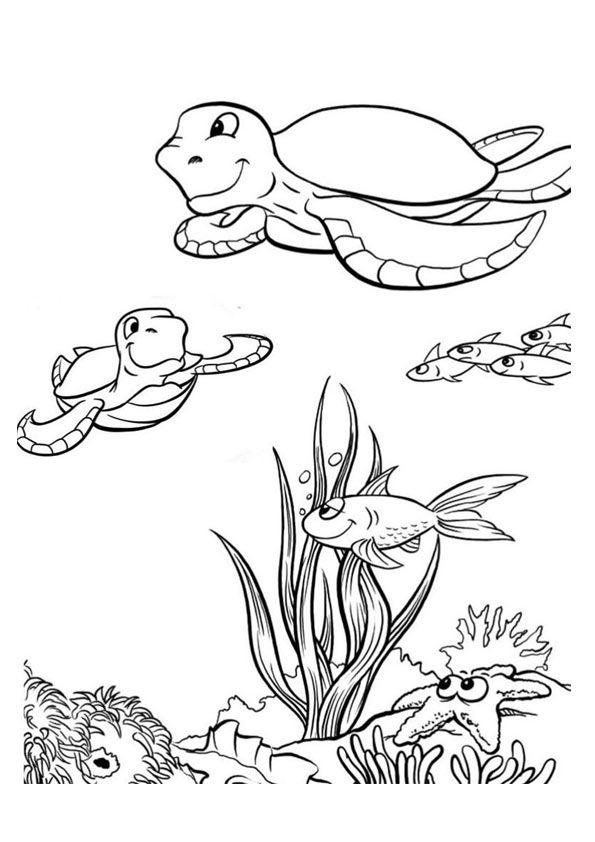 Print Coloring Image Momjunction Ocean Coloring Pages Animal Coloring Pages Turtle Coloring Pages