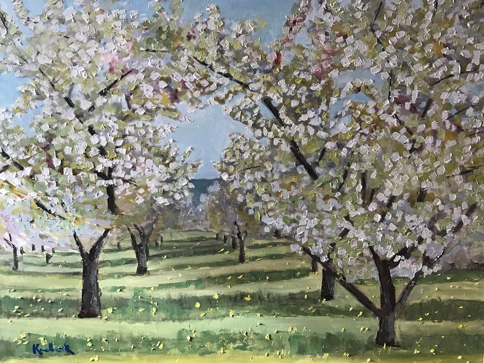 Image Result For Traverse City Cherry Trees Tree Cherry Tree Traverse City