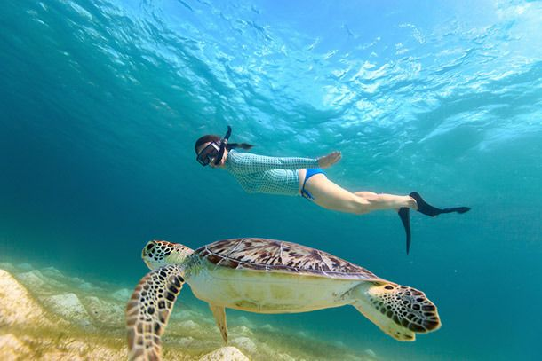 10 Best Places To Go Snorkeling In The World