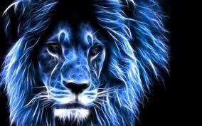 True Bleu Lion Fire Lion Of Judah Tyaye Vℓey ℓsve Pinterest