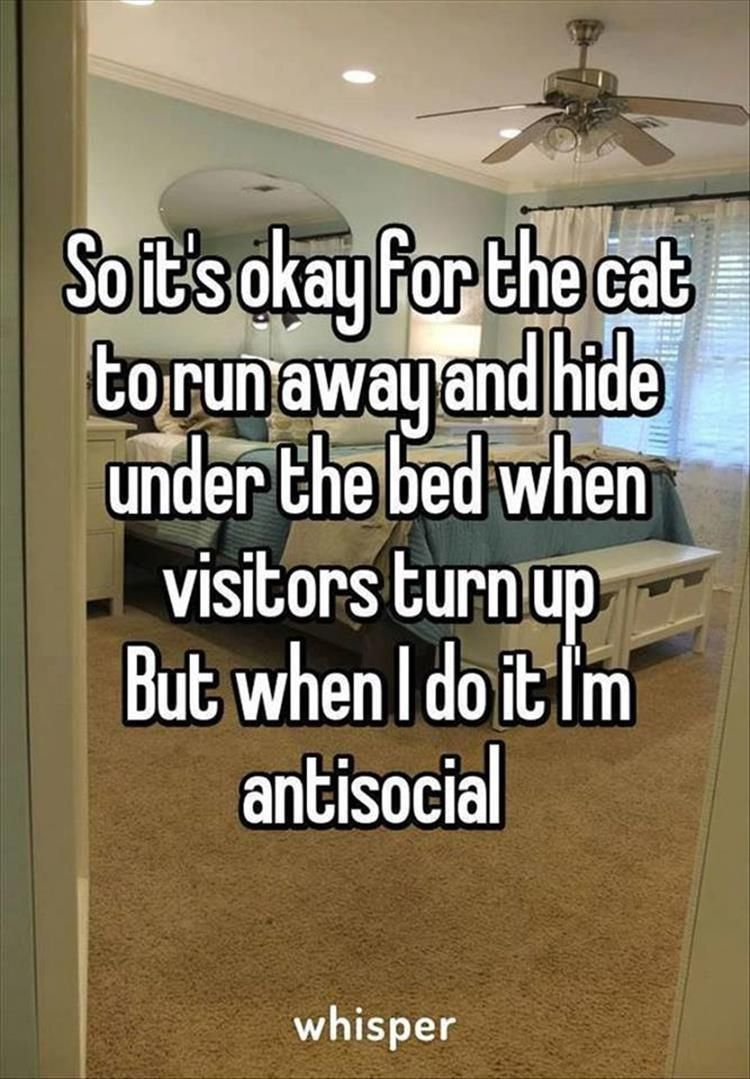 Funny Quotes Quotes And Jokes On Pinterest: Funny Pictures Of The Day – 45 Pics