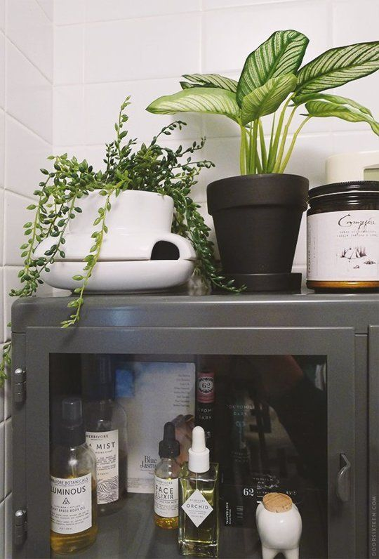 5 Times That Fake Plants Make The Cut (Or Do They?)   Apartment Therapy //Manbo