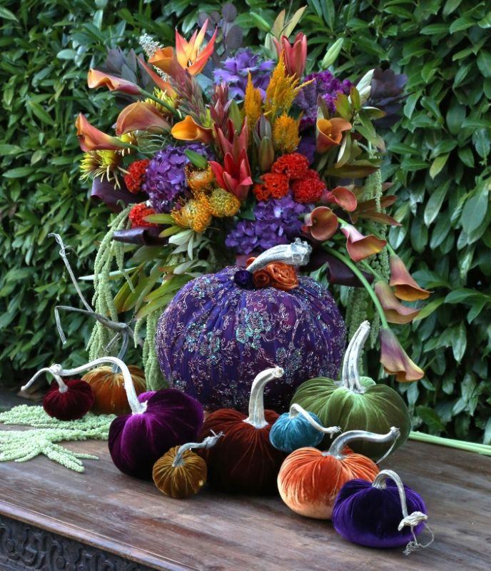 GardenVelvet pumpkins with real stems Velvet pumpkins