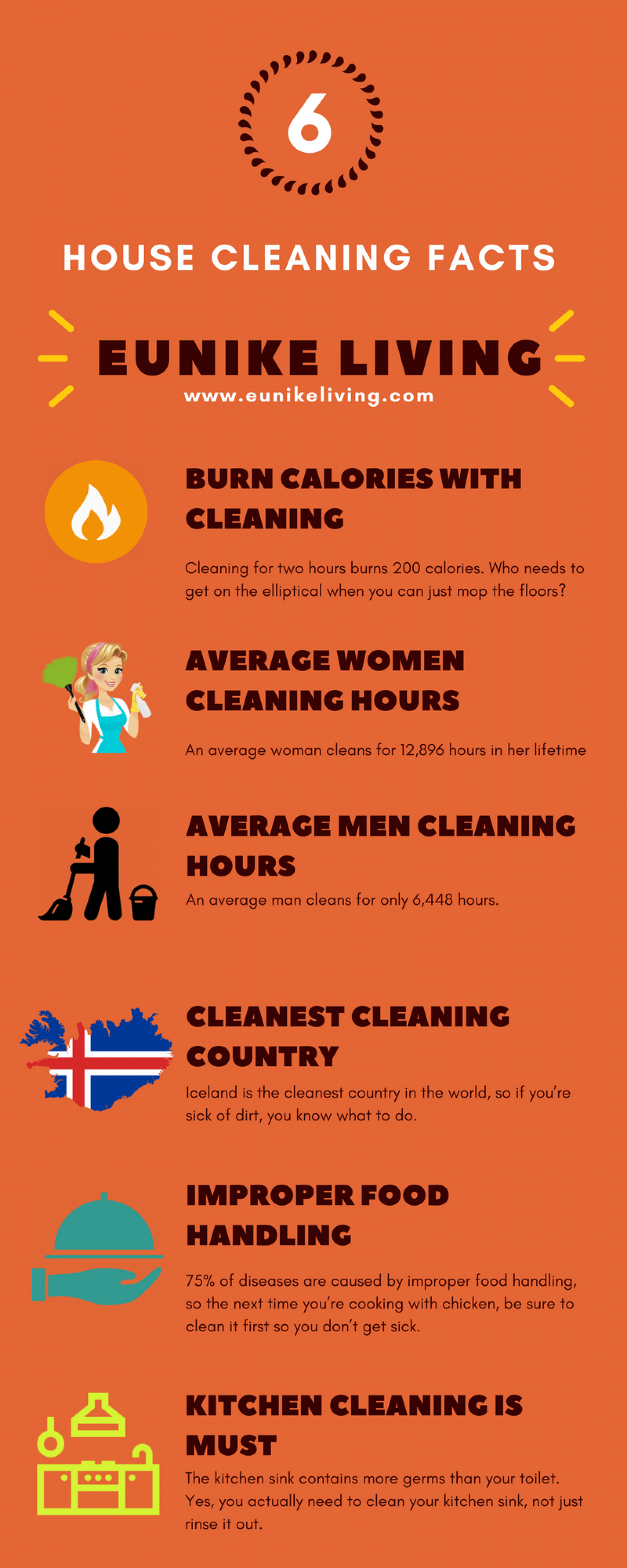 House Cleaning Facts Statistics 2018 Infographic Eunike Living Do You Know Iceland Is One Of The Cleanest Countries In World We Also Have To