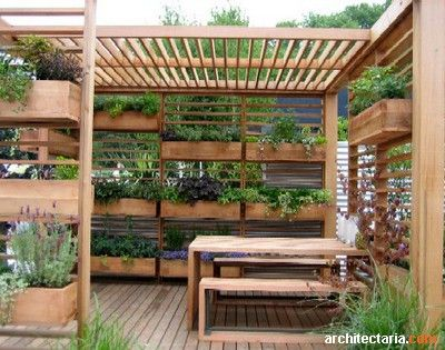 Vertical Garden Pergola - Vertical Garden Pergola [ Gardening ] Structures & Surfaces