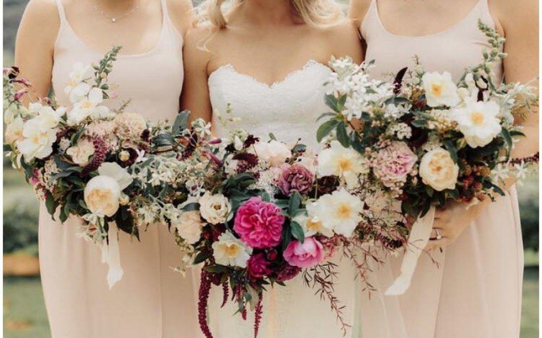 Vanessa james wedding amber whitecliffe blush pink vanessa james wedding amber whitecliffe blush pink bridesmaid dresses for new zealand ombrellifo Gallery