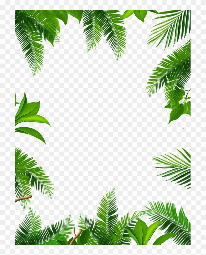 Enjoy Hd High Quality Jungle Book Page Border Hd Png Download And Download More Related Png Image For Free Jungle Book Page Borders Book Pages