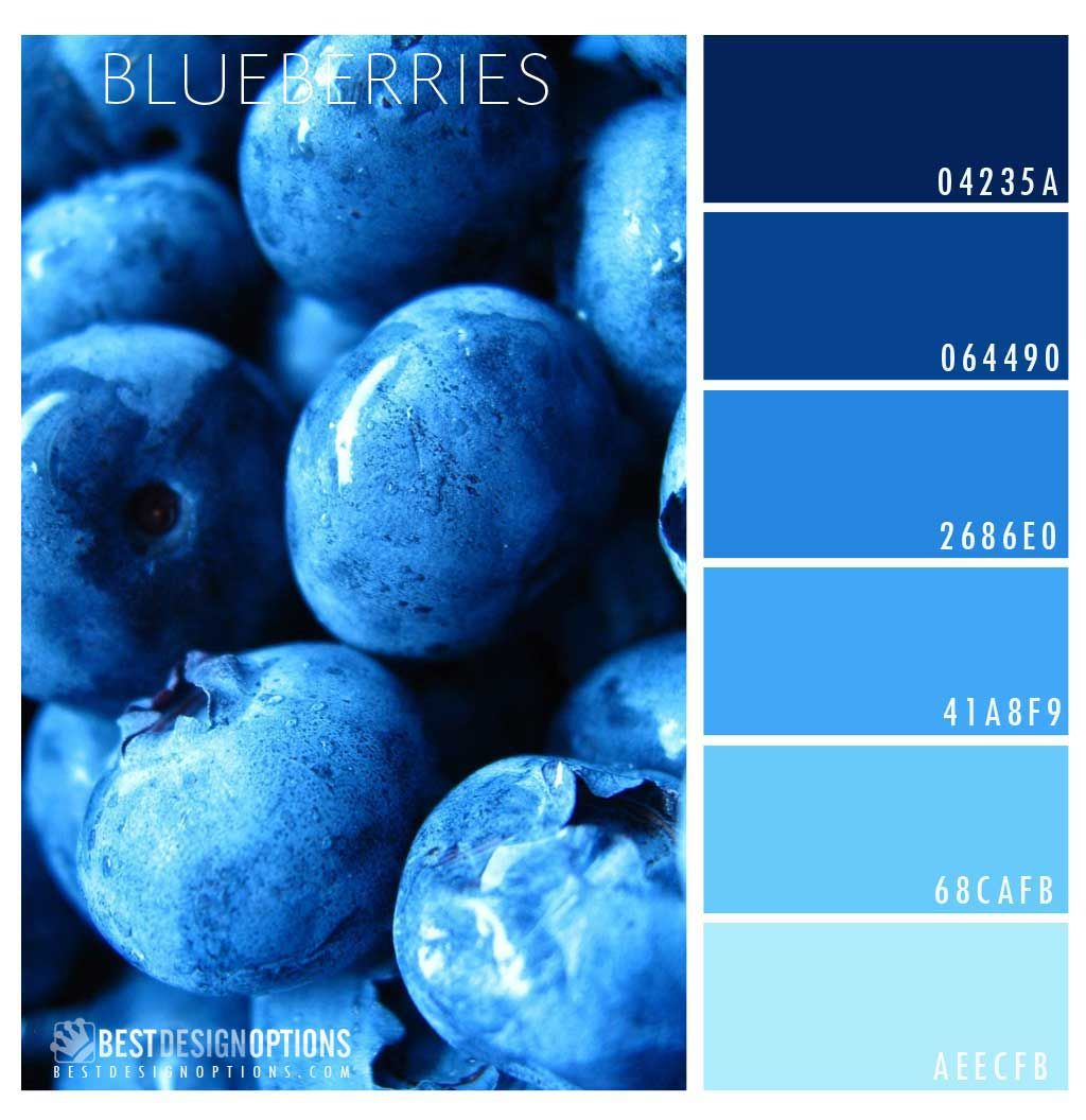 blueberry-color-palette Don\'t you just love blueberries? Here is a ...