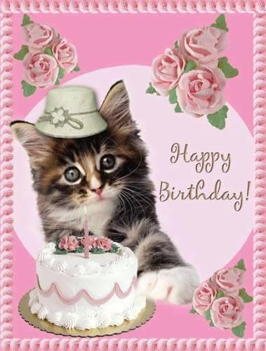Pin By Sarah Frankowski On Virtual Cat Lady Birthday Cards