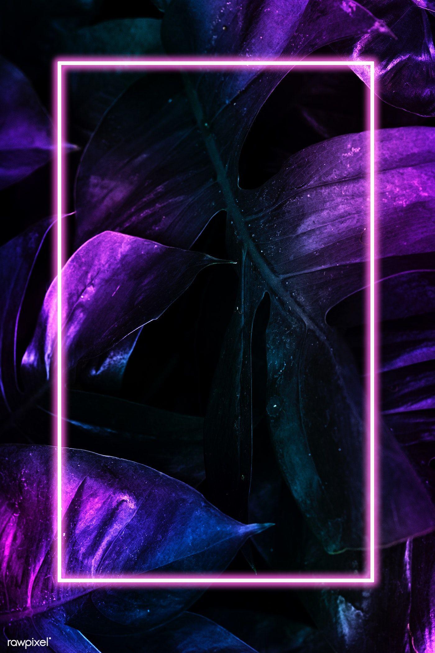Black Neon Wallpaper Art