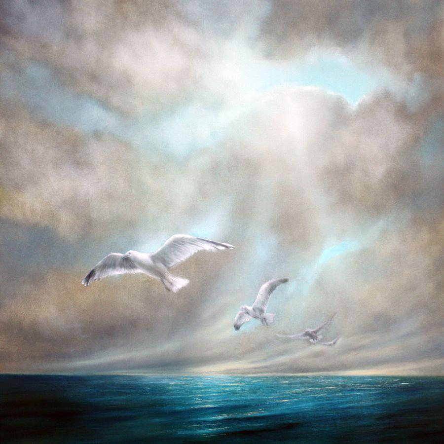Seagulls Scott Naismith Ready Framed Canvas 40x40cm