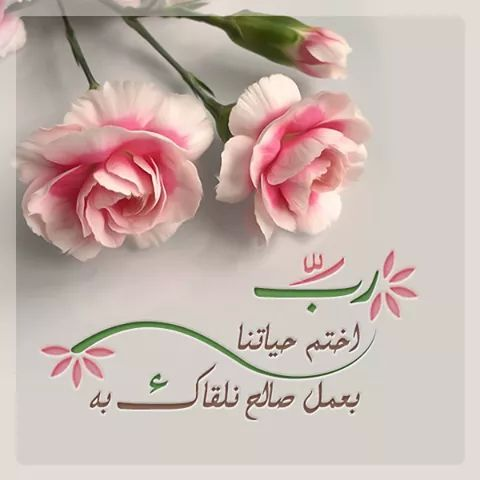 Sign In Islam For Kids Islamic Pictures Islamic Inspirational Quotes