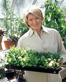 Seed Starting 101 - Martha Stewart Home & Garden