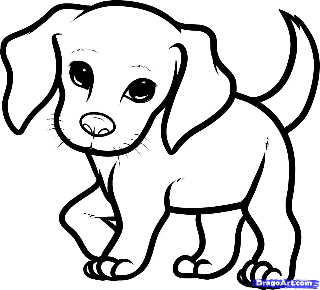 Line Drawings Of Cute Animals : How you draw a cute dog to beagle puppy