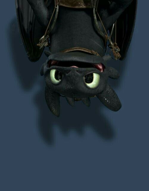 Toothless Wallpaper Dreamworks Animation Disney And Pixar Baymax
