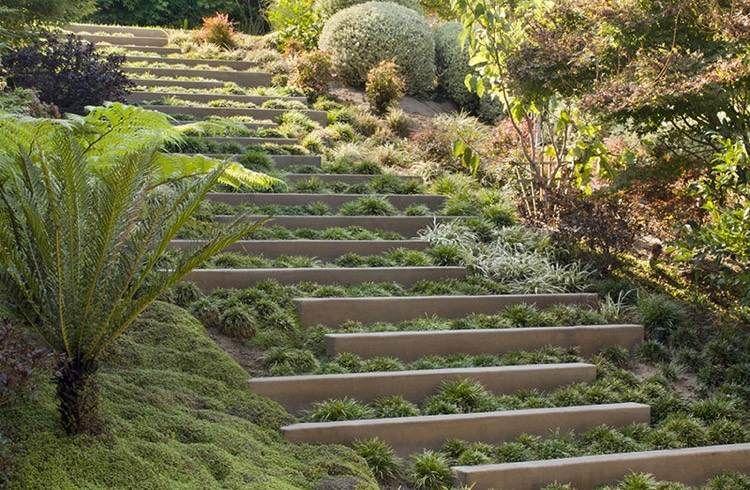 Escalier extérieur à marches végétaliséesu2013lu0027accent dans un jardin en
