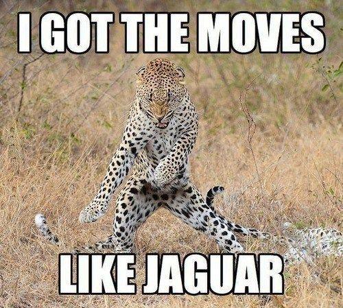 i got the moves