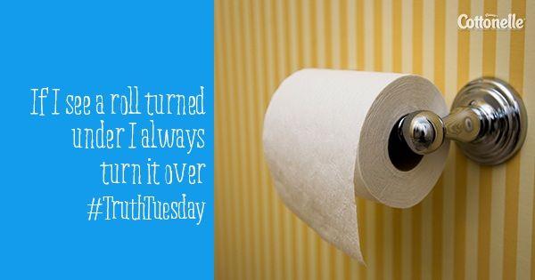 Have You Tried Cottonelle Flushable Wipes Toilet Paper Toilet