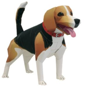 Beagle - Dogs / Cats - Animals - Paper Craft - Canon