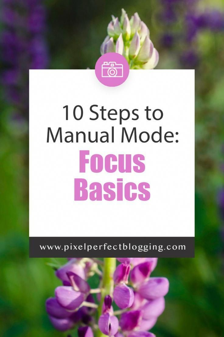 Are you trying to learn how to shoot pictures with your DSLR in manual mode? Click here to see how to get great focus in your photography. #photography #phototips #manualmode #focus via @pixelperfectblogging