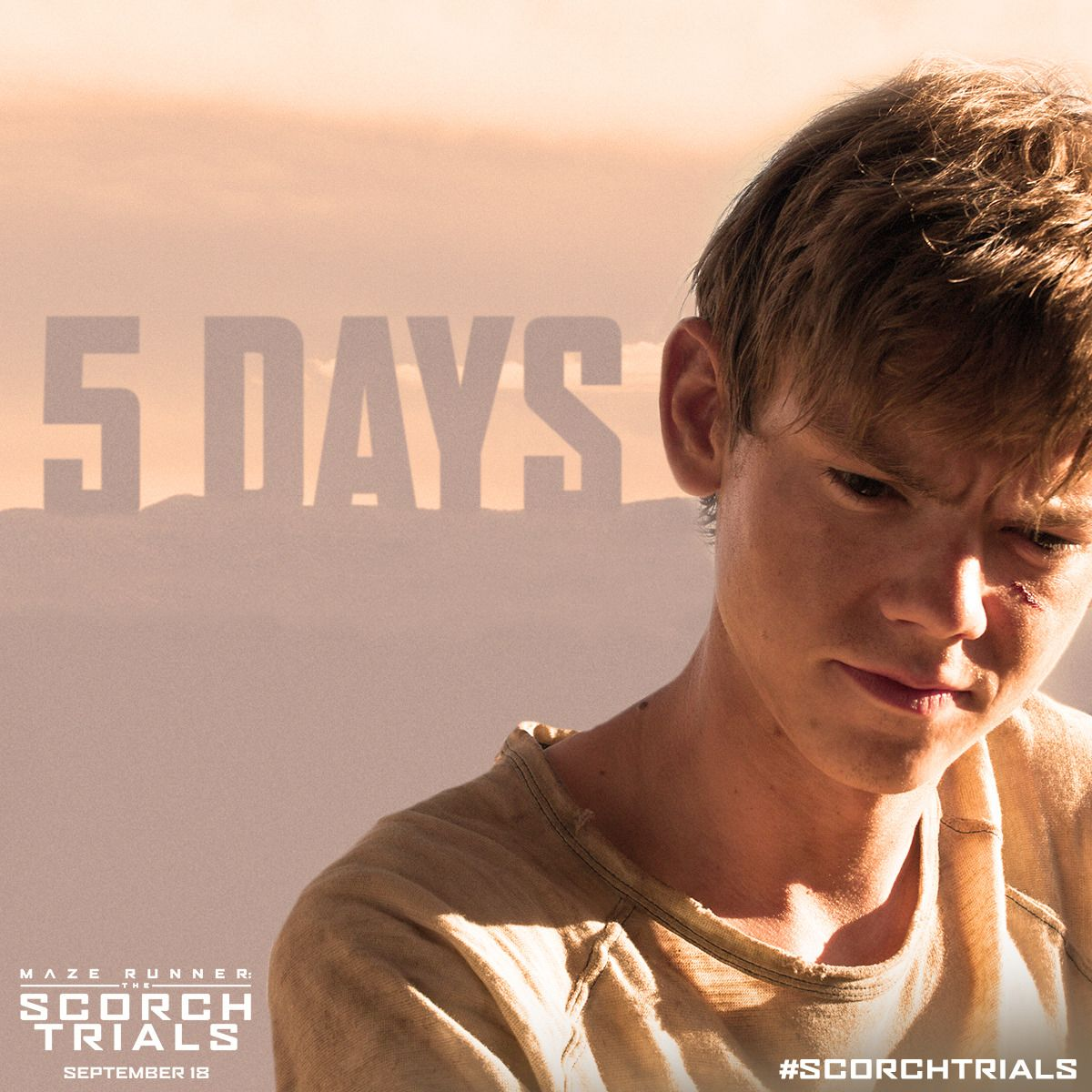 the maze runner : Photo