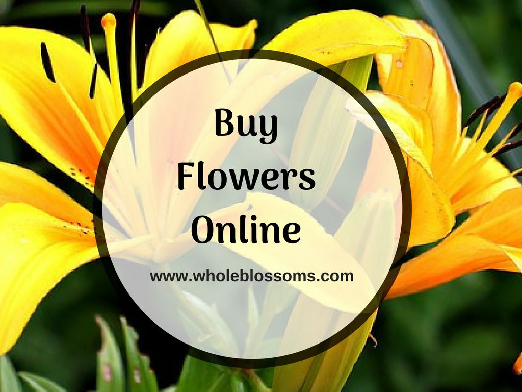 Whole Blossoms Is The Best Place To Order Flowers Online They